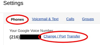 Making this magic Google Voice implementation happen