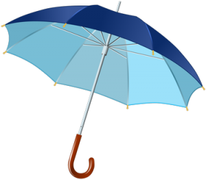 Umbrella Policy - Protecting Your Assets