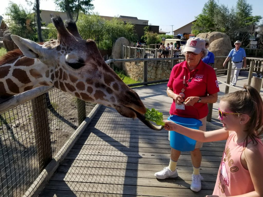 Were We Spending Too Much in July? You Tell Me… - Columbus Zoo