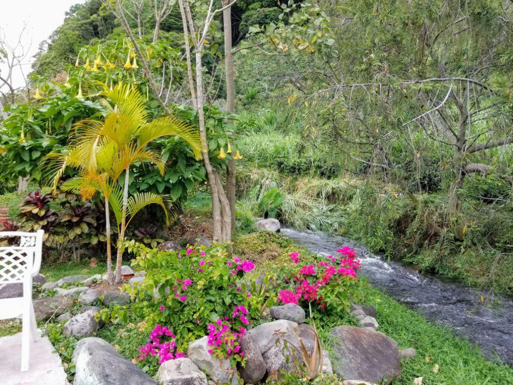 Boquete, Panama in Photos - River