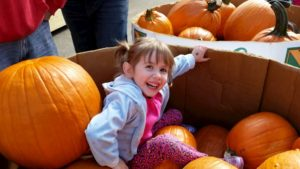 41 Unforgettable Quotes from My Daughter - Part 1 - Faith in the Pumpkin Bin