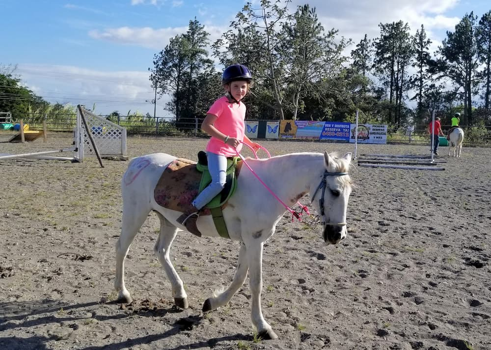 To Truly Reach for the Stars, Challenge Herd Mentality - Faith on a horse