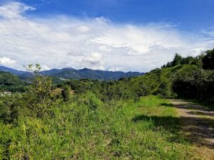 A beautiful photo of the landscape we took on a hike in Panama...