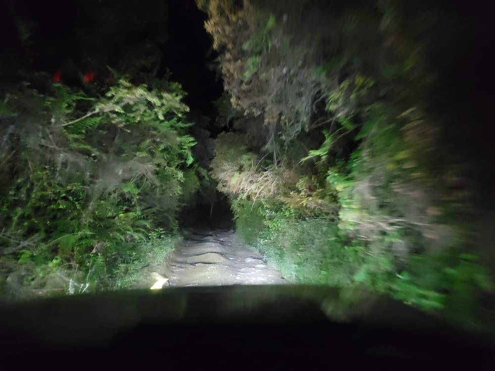 Volcán Barú trail at night