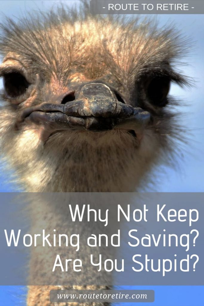 Why Not Keep Working and Saving? Are You Stupid?